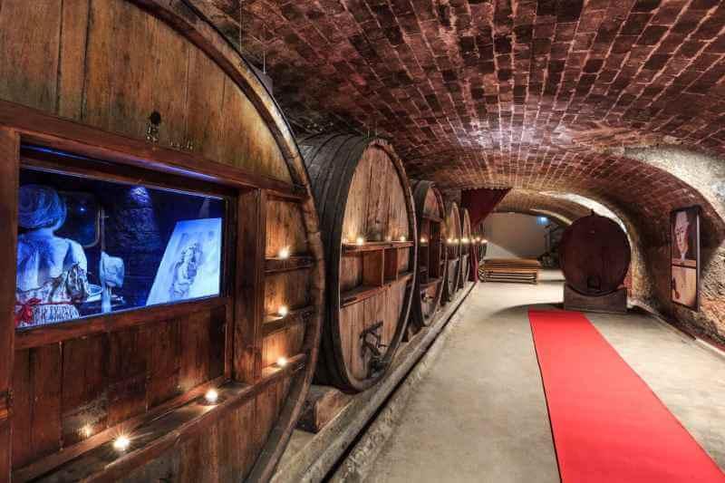 In Vino Varitas: выходные в шато среди виноградников региона Вар